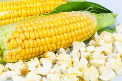 Maize and popcorn with leaves. Macro view of maize and popcorn with leaves Royalty Free Stock Image