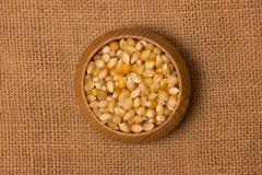 Maize seeds Royalty Free Stock Image