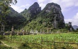 Forntida gravar i vietnam 5 Arkivfoton