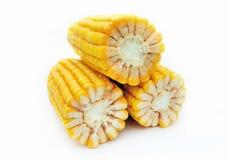 Maize on white background Stock Photos