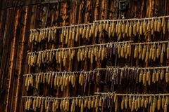 Maize on wood barn. Maize was hung up to dry Stock Image