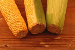 Maize on a wooden surface. Three cobs of corn in different stages of being peeled on a wooden surface with copy space Stock Photos