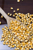Maize - Zea mays. Closeup of maize oven a wooden spoon Stock Photo