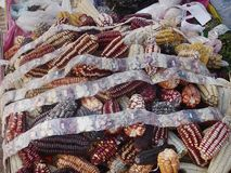 Various kind of Maize seeds for sale as souvenir in Andes area, Peru, South America. royalty free stock images