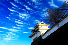 Maizuru Castle of Kofu, Japan. Royalty Free Stock Images