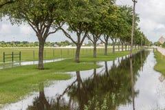 Maj 30, 2015 - Beverly Kaufman psa park, Katy, TX: Trwanie floo Obraz Royalty Free