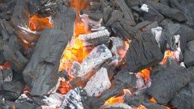 Maj, Krajowy BBQ miesiąc zdjęcie wideo