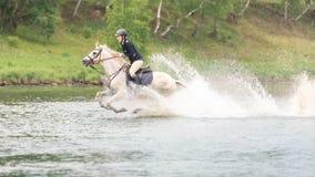 Maj 20, 2018 moscow En skicklig ryttarinnastyrka, genom att vada hästarna för flod grensle arkivbild