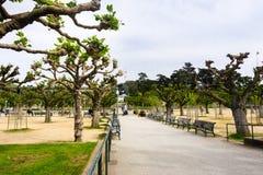 Maj 6, 2018 San Francisco/CA/USA - landskap i Golden Gate Park; Kalifornien akademi av det synliga vetenskaper och Sutro tornet i royaltyfri bild