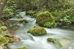 Majaceite Fluss-Kurs Stockbild