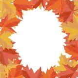 Majcher jesieni styl Spada liście wektorowi Kartka z pozdrowieniami wektor Przestrzeń dla teksta albumowego tła projekta ilustrac Zdjęcia Stock