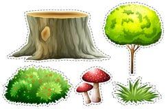 Majcher ustawiający natura z drzewem i krzakiem Obrazy Royalty Free