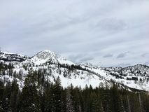 Majestätische Ansichten des Winters um Wasatch Front Rocky Mountains, Brighton Ski Resort, nah an Salt Lake- und Heber-Tal, Park  Lizenzfreie Stockbilder