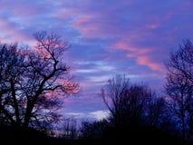 Majestätische Carolina Sky lizenzfreies stockfoto