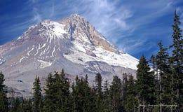 Majestätische Mt-Haubenschönheit im Frühjahr Lizenzfreies Stockfoto