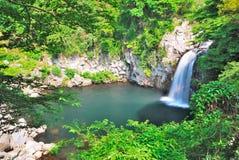 Majestätischer Wasserfall Lizenzfreies Stockfoto