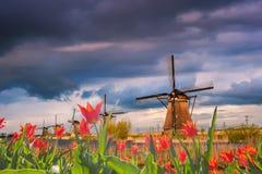 Majestätisk afton i Holland Royaltyfria Bilder