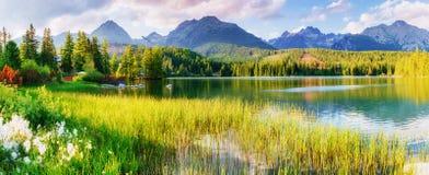 Majestätisk bergsjö i nationalparken höga Tatra Strbske ples arkivfoton