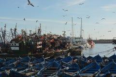 Majestätisk gammal hamnstad av Essaouira Marocko Arkivbild