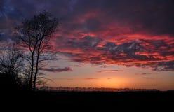 Majestätisk solnedgång i fältet Arkivfoto