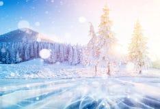 Majestätiska berg för mystiskt vinterlandskap i vinter Dolt träd för magisk vintersnö Fotohälsningkort Bokeh royaltyfri bild