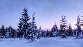 Majestätiska berg för mystiskt vinterlandskap i vinter Dolt träd för magisk vintersnö Fotohälsningkort Bokeh verkställer stock video