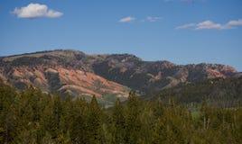 Majestätiska röda kullar som förbiser vildmarkpinjeskogen Fotografering för Bildbyråer