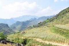 Majestätiskt av passerande på HaGiang Vietnam 2016 Arkivbild