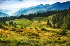 Majestätiskt landskap av sommarberg En sikt av de dimmiga lutningarna av bergen i avståndet Royaltyfri Bild