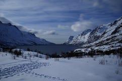 Majestätiskt vitt fält med det snöig berget och blåttfjorden i den arktiska cirkeln Royaltyfri Fotografi