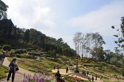 Majestätträdgård arkivfoton