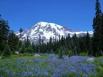 Majestad de la montaña púrpura Imagenes de archivo