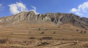 Majestad de las montañas fotografía de archivo