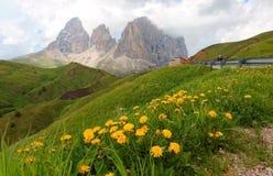 Majestatyczna lato sceneria przepustka Sella z dzikimi kwiatami na zielonych trawiastych łąkach w pogórzach fotografia stock
