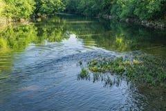 Majestatyczna Roanoke rzeka Obraz Stock