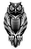 Majestatyczna sowa Obraz Stock