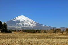Majestatyczni widoki zakrywający śnieg Wspinają się Fuji, Japonia Obrazy Stock