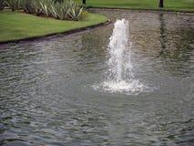 Majestatyczny strumień woda w stawie zdjęcia stock