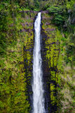 Majestic Akaka Falls waterfall located on Kolekole Stream on the Big Island of Hawaii Stock Images