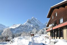 Free Majestic Alpine View Royalty Free Stock Photos - 12258928