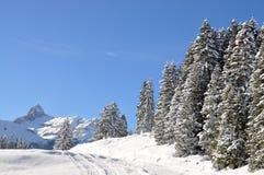 Majestic Alpine view Royalty Free Stock Image