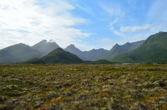 Majestic bog landscape with light foggy mountain in background in summer. Vesteraalen, northern norway Stock Photo