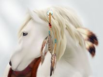 A majestic and brave Cherokee white horse. A gorgeous Native American white stallion stands strong and proud with his Indian attire Royalty Free Stock Photography