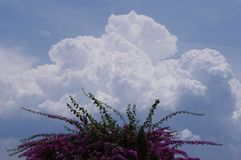 majestic cloud in blue sky royalty free stock photo