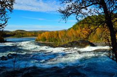 Majestic colorful autumn landscape with mighty roaring waterfall Royalty Free Stock Image