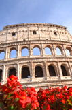 Majestic Colosseum in Rome against blue sky, Italy Stock Photography