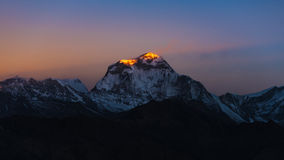 The majestic of Dhaulagiri mountain peak during sunrise Royalty Free Stock Photos