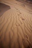Majestic dune landscape Stock Images