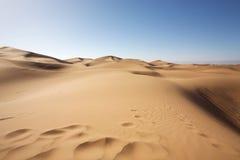 Majestic dune landscape Stock Image