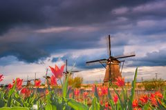 Majestic Evening in Holland Royalty Free Stock Images